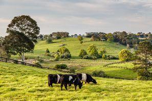 Autorent Coopers Plains, Austraalia