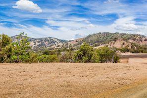 Autorent Muswellbrook, Austraalia