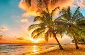 Auto rentimine Barbados