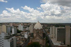 Autorent Araraquara, Brasiilia