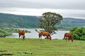 Autorent Estcourt, Lõuna-Aafrika