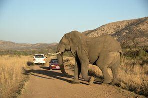 Autorent Klerksdorp, Lõuna-Aafrika