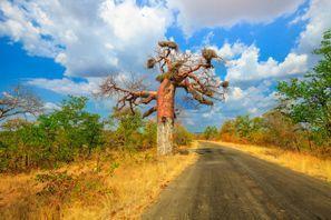 Autorent Makhado, Lõuna-Aafrika
