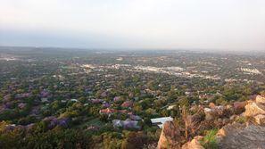Autorent Rosebank, Lõuna-Aafrika
