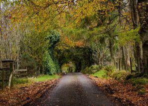 Autorent Omagh, Põhja-Iirimaa