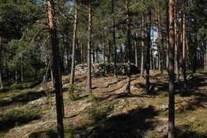 Autorent Paimio, Soome